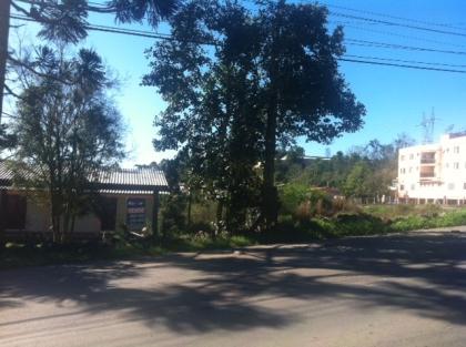 Terreno de 4.000m² plano no Barracão,  80 metros frente para rodovia, área nobre.Maiores informações Vama Imóveis 54-3055-4596.