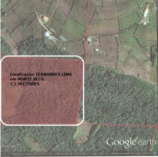 Ótima área de terra para sítio ou propriedade rural localizada a 3,5 km de Monte Belo do Sul, com 7,5 hectares, sendo 1,5 com plantação de parreira e 6 hectares de mata e capoeira. OBS: Aceita carro até R$ 40.000,00