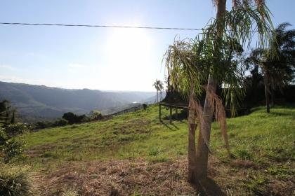 Amplo terreno em área rural, com 2.640 m²,  localizado a 1km da sede do distrito de Faria Lemos, com acesso do lado esquerdo da estrada secundária, cercado por área verde,  parreirais e com  uma vista incrível para o Vale dos Rio das Antas.  * Já possui instalações hidráulicas e elétricas.