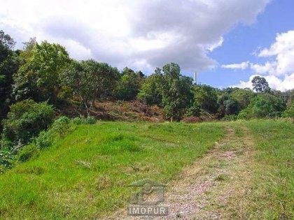 Excelente área de terras localizada no bairro Vinagreira, ótimo local para construção de empreendimento.