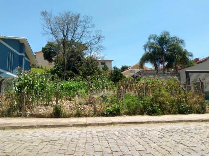 Excelente terreno no bairro Fenavinho. Ao lado da Rua 7 de Setembro.  *Avaliamos a possibilidade de troca com imóvel de até metade do valor.